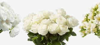 flower subscription white flower subscription