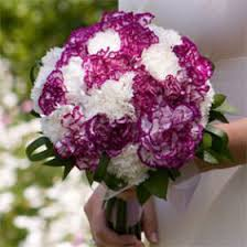 purple carnations premium purple and white carnation bridal bouquet global