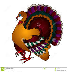 vector thanksgiving turkey bird stock illustration image 33189578