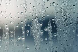 what causes condensation inside windows and how can i prevent it