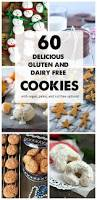 60 gluten free and dairy free christmas cookies u2022 the fit cookie