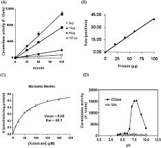 identification of a novel amidase motif in neutral ceramidase
