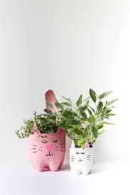 Cute Plant by Diy Soda Bottle Kitty Cat Planters Salty Canary