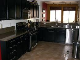 Antique Black Kitchen Cabinets Black Kitchen Cabinet Knobs Snaphaven