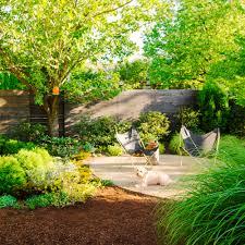 23 fantastic backyard landscaping with a dog u2013 izvipi com