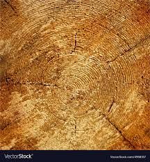 wood tree rings images Wood texture tree rings sawing wood royalty free vector jpg