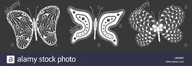 creative butterfly black and white set different designs vector