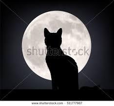 black cat sitting opposite moon stock vector 216824374
