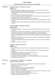 internal controls auditor resume samples velvet jobs