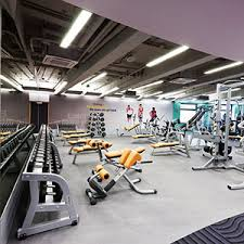 home gym layout design sles home pavigym gym flooring solutions