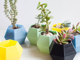 Small Desk Plants Small Geometric Planter For Holding Succulents And Small Desk