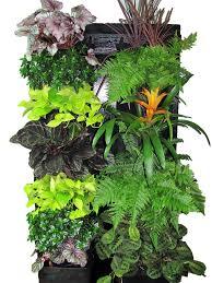 tropical vertical garden kit u2014 edible walls