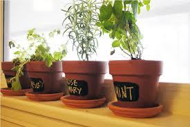 Indoor Herb Garden Light Hanging Indoor Herb Garden U2014 New Decoration How To Grow Indoor