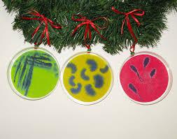 ornaments sets rack il fullxfull petri dish set of ideas