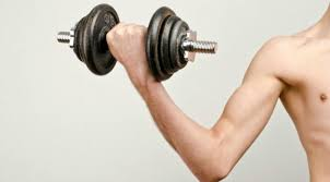 Small Arm - biceps building tips 7 reasons your guns aren t growing