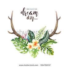 watercolor deer horns tropical stock illustration