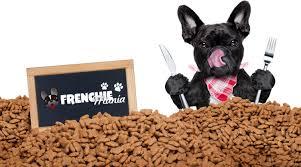 10 common mistakes when feeding a french bulldog