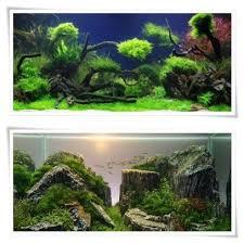 Aquascape Tank Aquascape Aquarium Designs Android Apps On Google Play