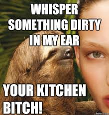 Dirty Sloth Memes - pull out sloth meme out best of the funny meme