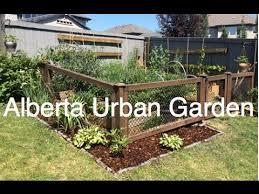 38 best indoor gardening images on pinterest indoor gardening