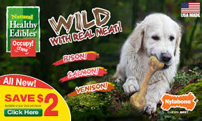 edibles coupons 1 coupon for nylabone healthy edible dog treats plus my dogs