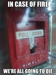 Spider Fire Alarm Meme - in case of fire we re all going to die spider fire alarm meme