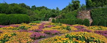 how to spend an afternoon at the north carolina arboretum the