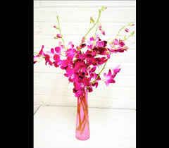 Flower Shops In Springfield Missouri - summer flowers delivery springfield mo house of flowers inc