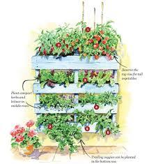 vertical pallet garden plan gardening mother earth living