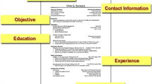 basic resume exles diversity employment services archive how to 5