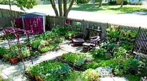 self sustaining garden top 10 tips for urban homesteading besurvival