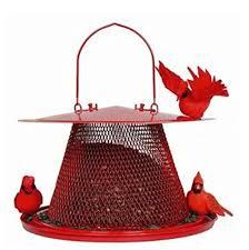 how to attract cardinals to your bird feeder best bird feeders