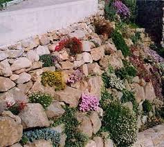small garden ideas on a budget ahigo net home inspiration