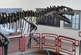 chasing after allosaurus u2013 phenomena