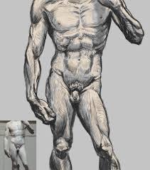 soule designs anatomy learnin u0027