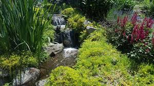 aquascapes of ct aqua scapes of ct llc landscape company portland connecticut