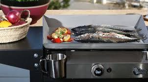 cuisine à la plancha électrique comment bien cuisiner avec une plancha électrique musee bergues fr