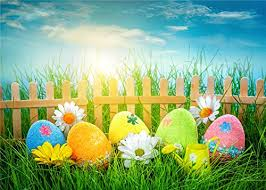 easter backdrops 7x5ft green photo studio background blue sky color https