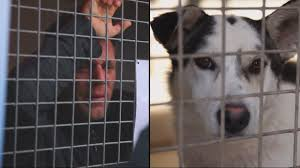 locked in a cage for 87 hours remi gaillard youtube