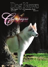 dog news september 20 2013 by dn dog news issuu