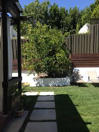 Backyard View Gorgeous Two Story Hollywood Style House Vrbo