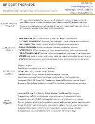resume summary exles marketing sles of resume summary summary resume template exle resume