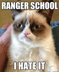 Ranger School Meme - ranger school i hate it grumpy cat quickmeme