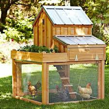 Fuels Backyard Get Together How To Build A Chicken Coop In 4 Easy Steps 2nd Edition