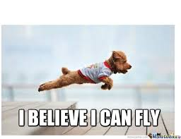 I Believe I Can Fly Meme - i believe i can fly by recyclebin meme center
