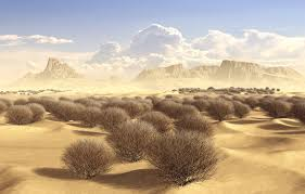 tumbleweed desert by simone83 bryce landscape