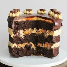 peanut butter cup cake rich chocolate cake with peanut butter