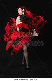 burlesque feather fans burlesque feather fans stock photos burlesque feather fans stock