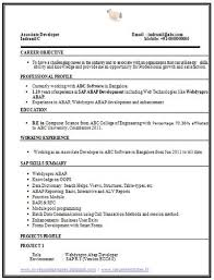 Computer Science Resume Sample by Career Page 11 Scoop It