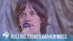 25 best moss for century rolling stones gather moss 1964 pathé